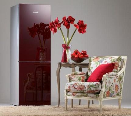 Холодильник производства компании Снайге